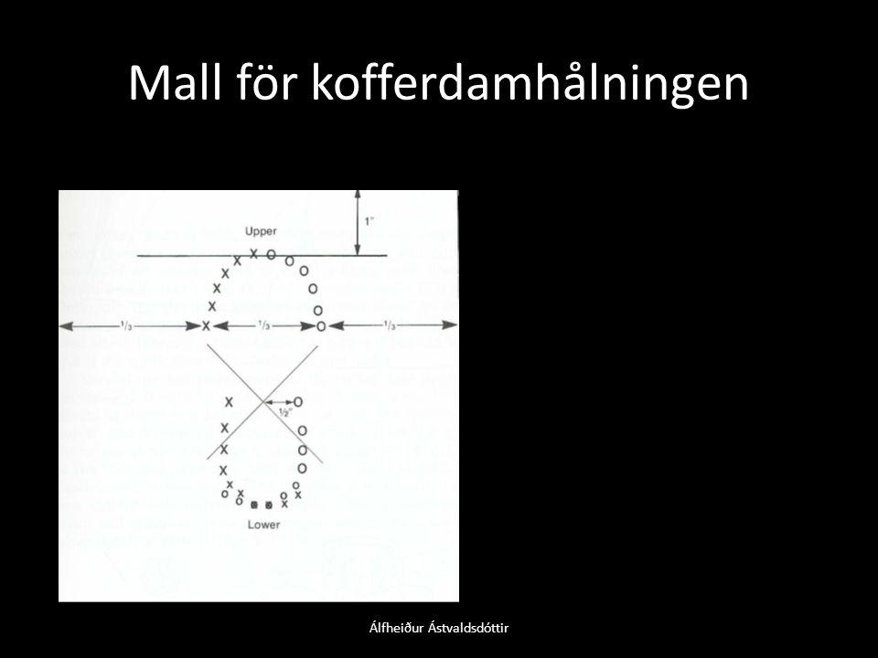 Mall för kofferdamhålningen Álfheiður Ástvaldsdóttir