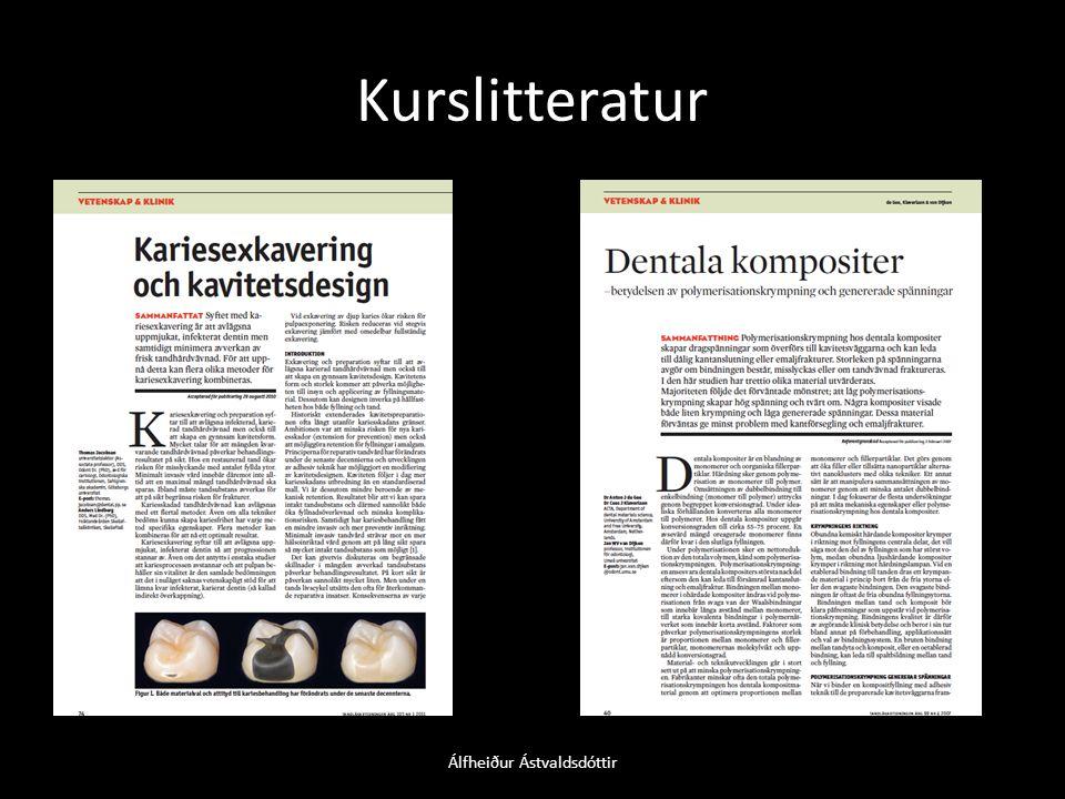 15 MODB Álfheiður Ástvaldsdóttir
