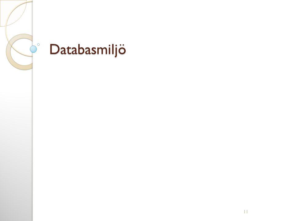 Databasmiljö 11