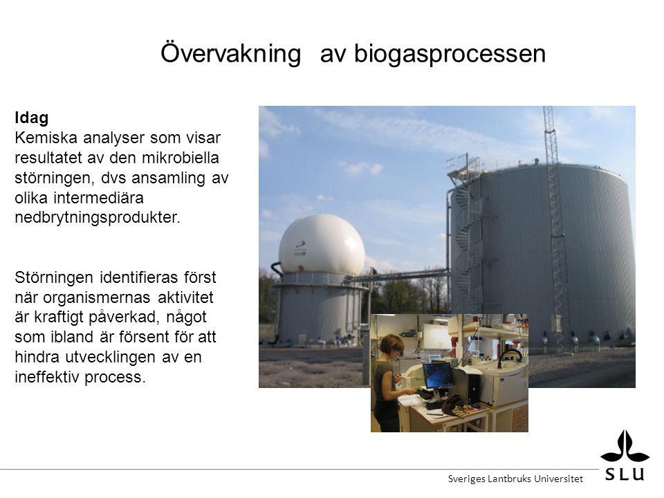 Övervakning av biogasprocessen Idag Kemiska analyser som visar resultatet av den mikrobiella störningen, dvs ansamling av olika intermediära nedbrytningsprodukter.