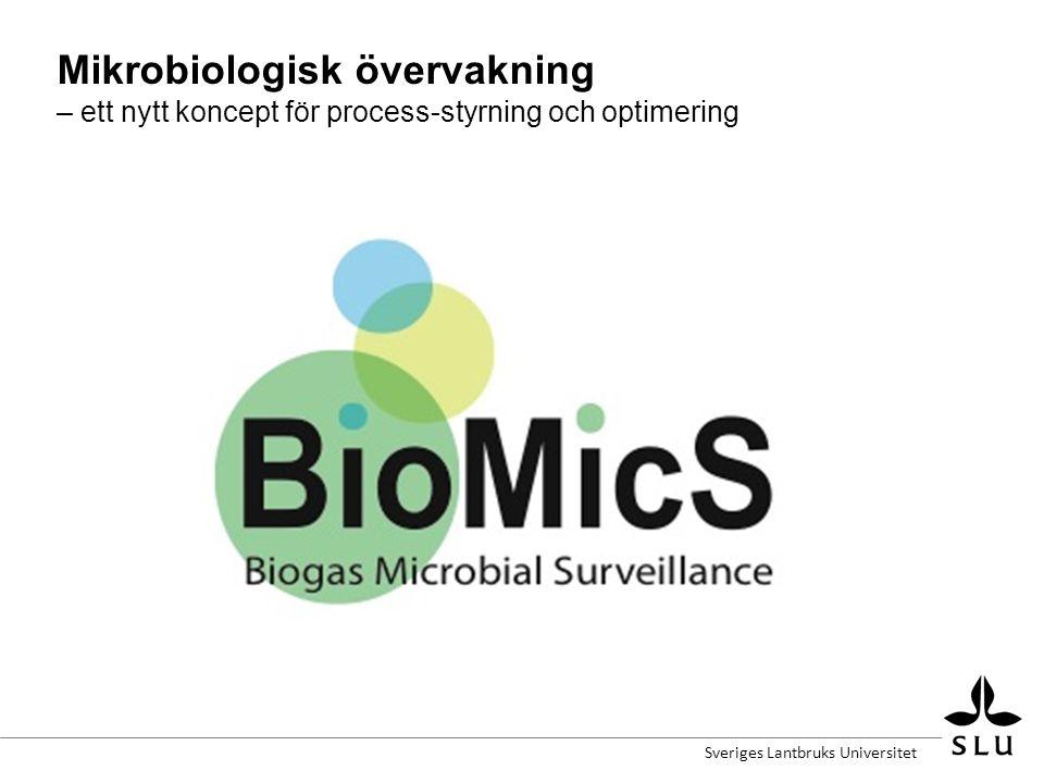 Mikrobiologisk övervakning – ett nytt koncept för process-styrning och optimering