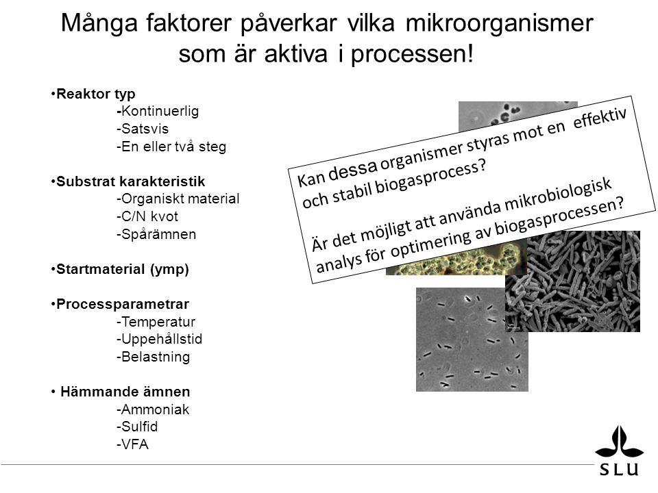 Många faktorer påverkar vilka mikroorganismer som är aktiva i processen.