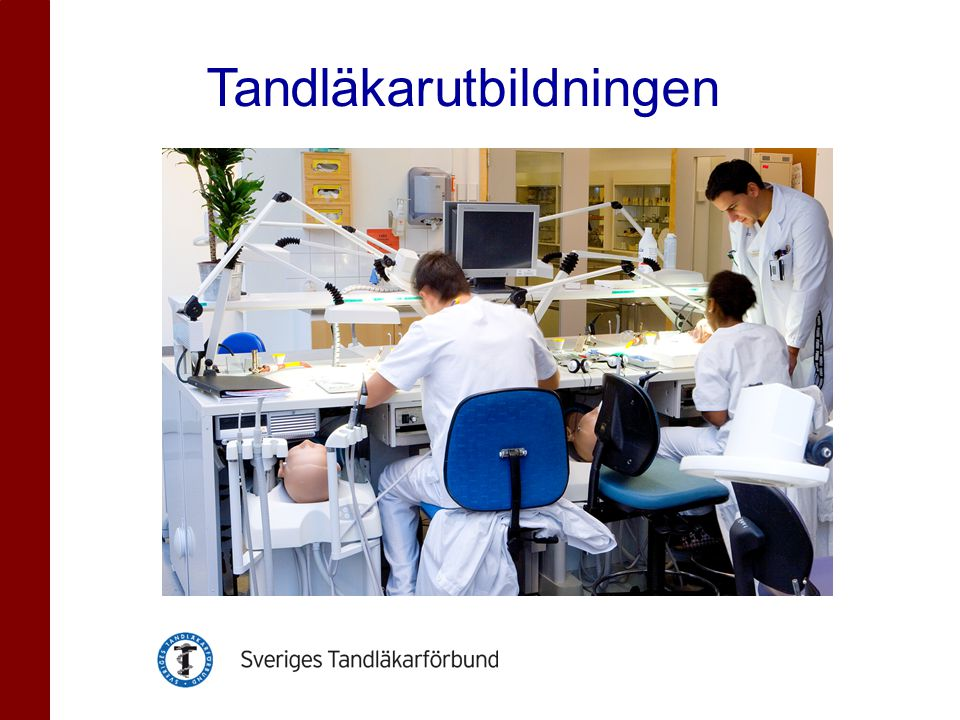 •Fem års heltidsstudier •Stockholm, Göteborg, Umeå, Malmö •Bunden undervisning minst 32 timmar/vecka • workload på 40-45 tim/vecka •Unikt att kombinera teoretisk och praktisk klinisk undervisning.