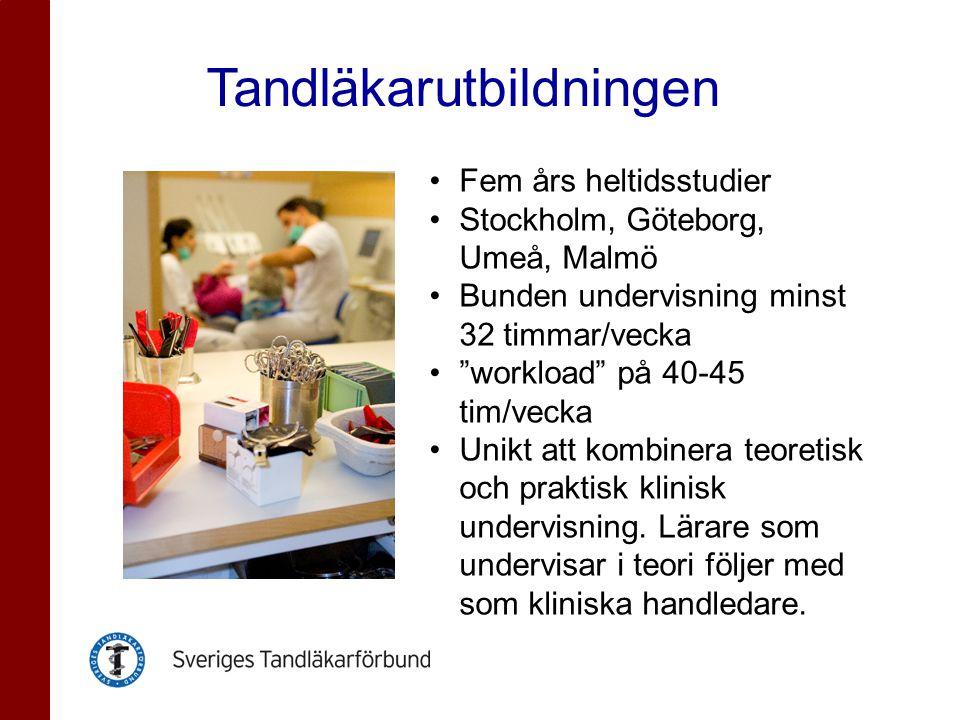 Överblick studieorter finns på www.tandlakarforbundet.se