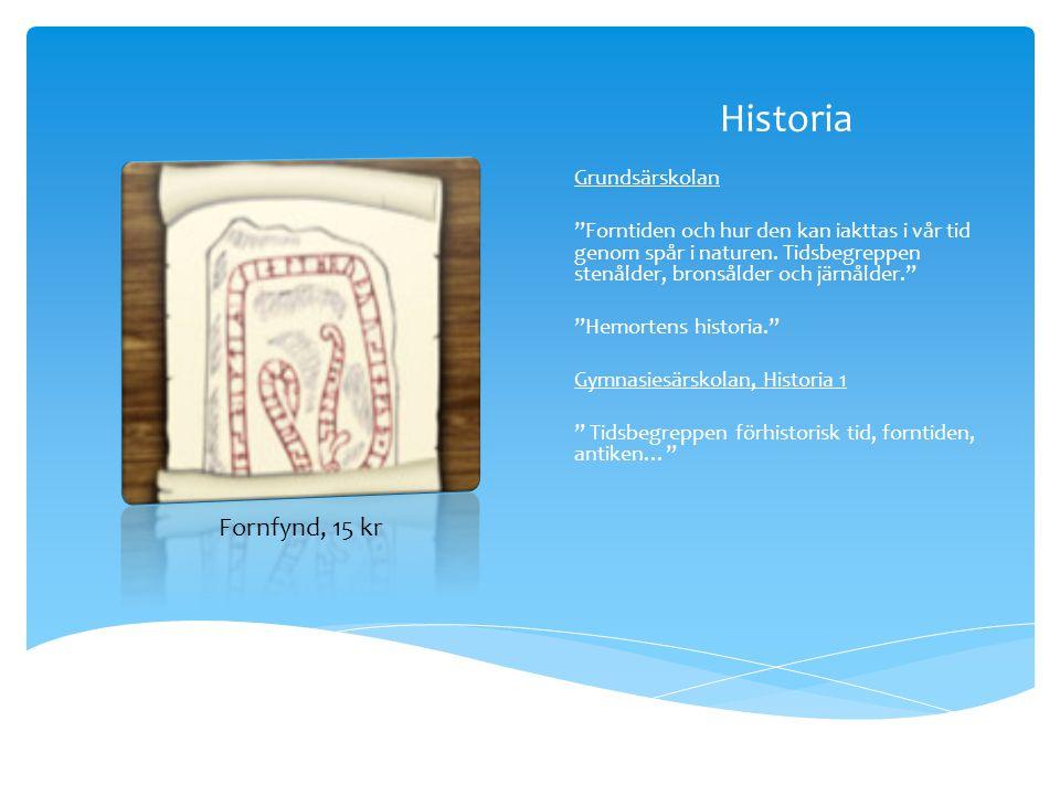 """Historia Grundsärskolan """"Forntiden och hur den kan iakttas i vår tid genom spår i naturen. Tidsbegreppen stenålder, bronsålder och järnålder."""" """"Hemort"""