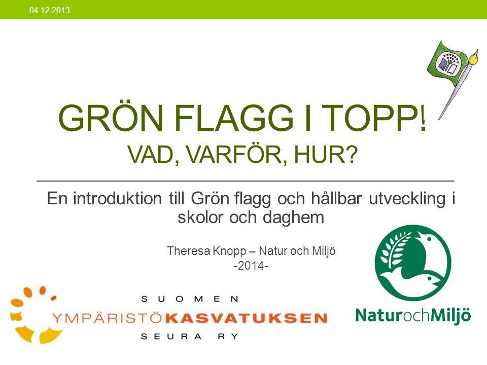• Ansvarig för Grön flagg i Sverige • Nätsidor (www.hsr.se)www.hsr.se • http://www.hsr.se/det-har-gor-vi/land/i- skolan-och-forskolan-gron-flagg • Bra material på svenska Internationella Grön Flagg sidor 19.11.2013 • Nätsidor (www.eco-schools.org) • Mångsidigt med material, exempel • Internationella kontakter • Facebook
