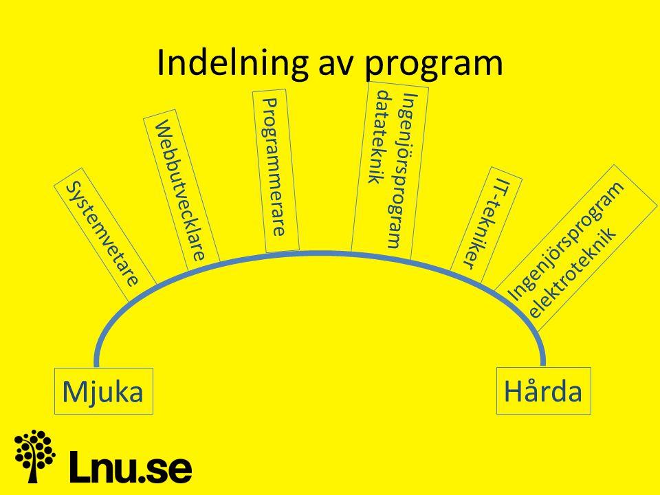 Indelning av program Hårda Mjuka IT-tekniker Ingenjörsprogram datateknik Programmerare Webbutvecklare Systemvetare Ingenjörsprogram elektroteknik
