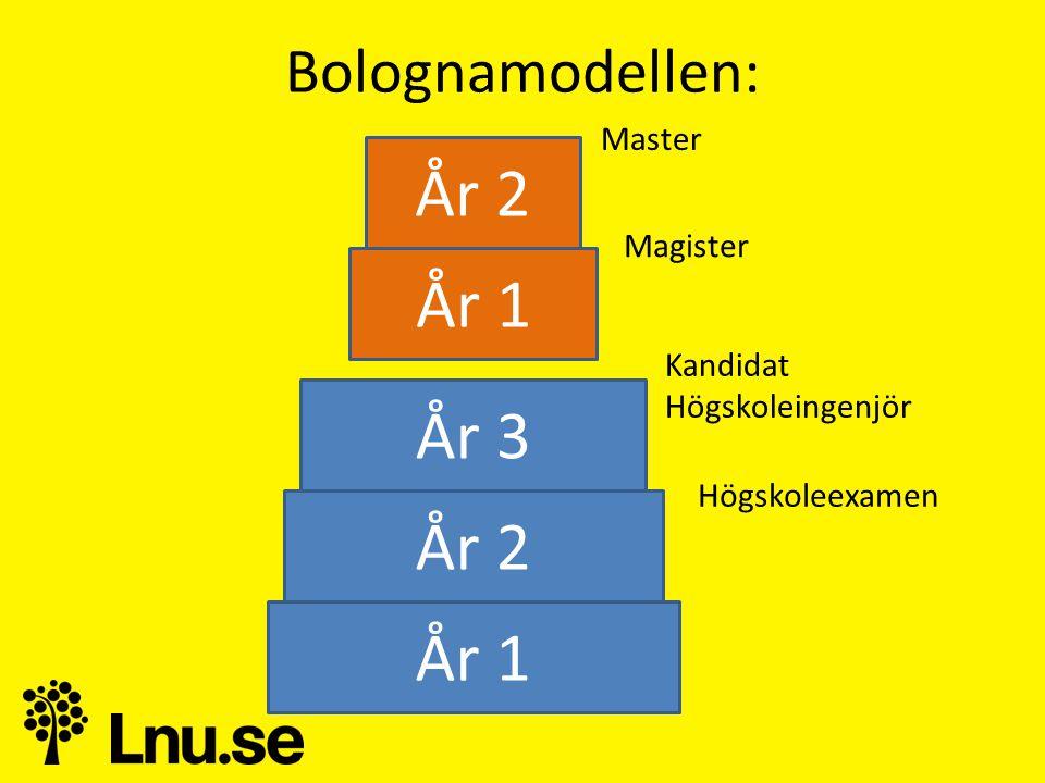 Bolognamodellen: År 1 År 2 År 3 År 1 År 2 Kandidat Högskoleingenjör Högskoleexamen Magister Master