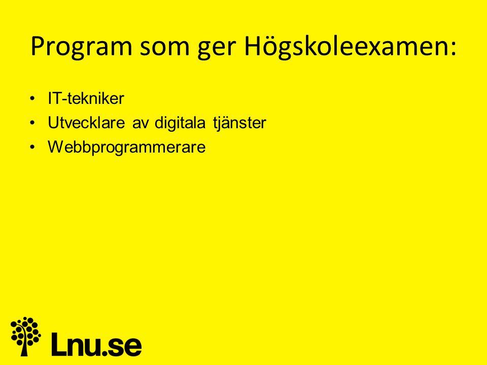 Program som ger Högskoleexamen: •IT-tekniker •Utvecklare av digitala tjänster •Webbprogrammerare