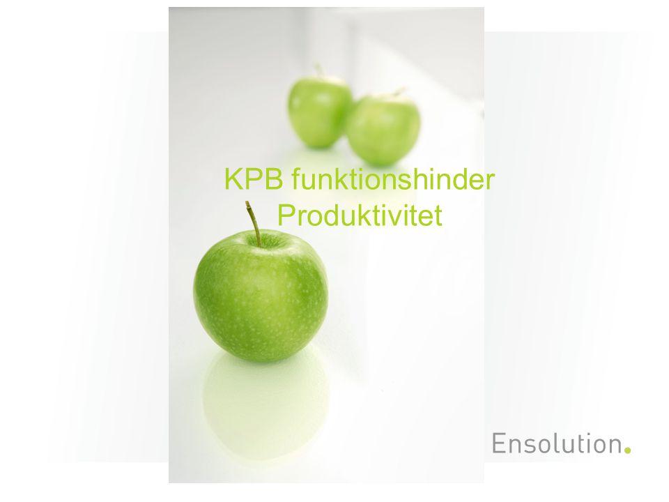 KPB funktionshinder Produktivitet