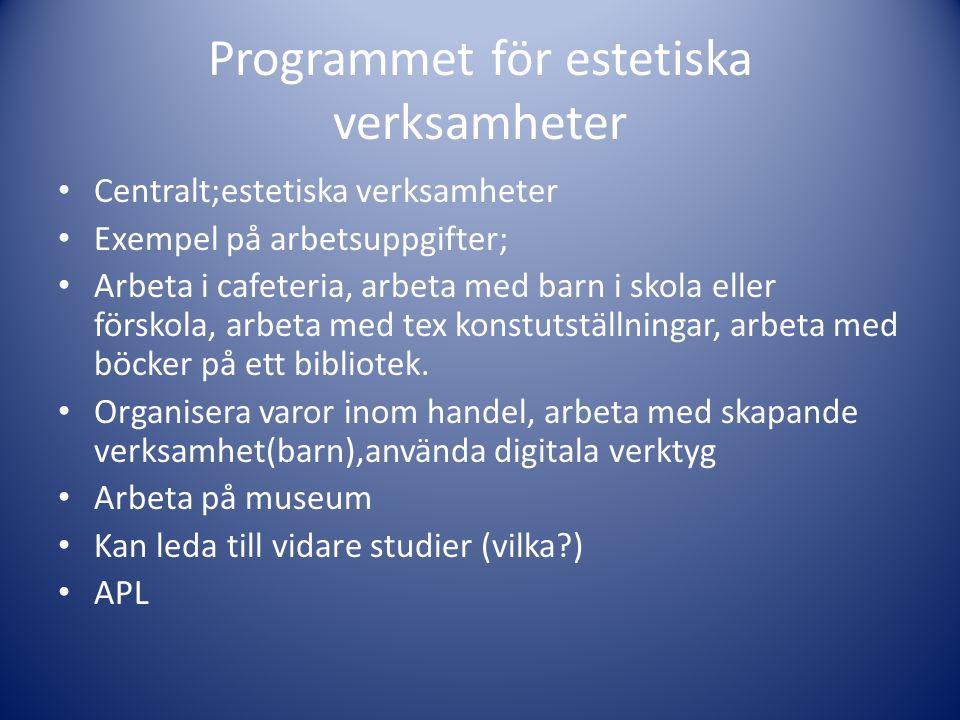 Programmet för estetiska verksamheter • Centralt;estetiska verksamheter • Exempel på arbetsuppgifter; • Arbeta i cafeteria, arbeta med barn i skola el