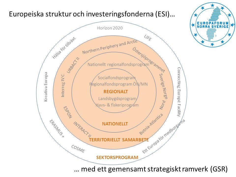 En meny med tematiska mål 1.Stärka forskning, teknisk utveckling och innovation 2.Öka tillgången till, användningen av och kvaliteten på informations- och kommunikationsteknik 3.Öka konkurrenskraften hos små och medelstora företag 4.Stödja övergången till en koldioxidsnål ekonomi inom alla sektorer 5.Främja anpassning, riskförebyggande och riskhantering i samband med klimatförändringar 6.Skydda miljön och främja ett effektivt resursutnyttjande 7.Främja hållbara transporter och få bort flaskhalsar i viktig nätinfrastruktur 8.Främja sysselsättning och arbetskraftens rörlighet 9.Främja social inkludering och bekämpa fattigdom 10.Investera i utbildning, färdigheter och livslångt lärande 11.Förbättra den institutionella kapacitet och effektiviteten hos den offentliga förvaltningen SMART HÅLLBAR INKLUDERANDE