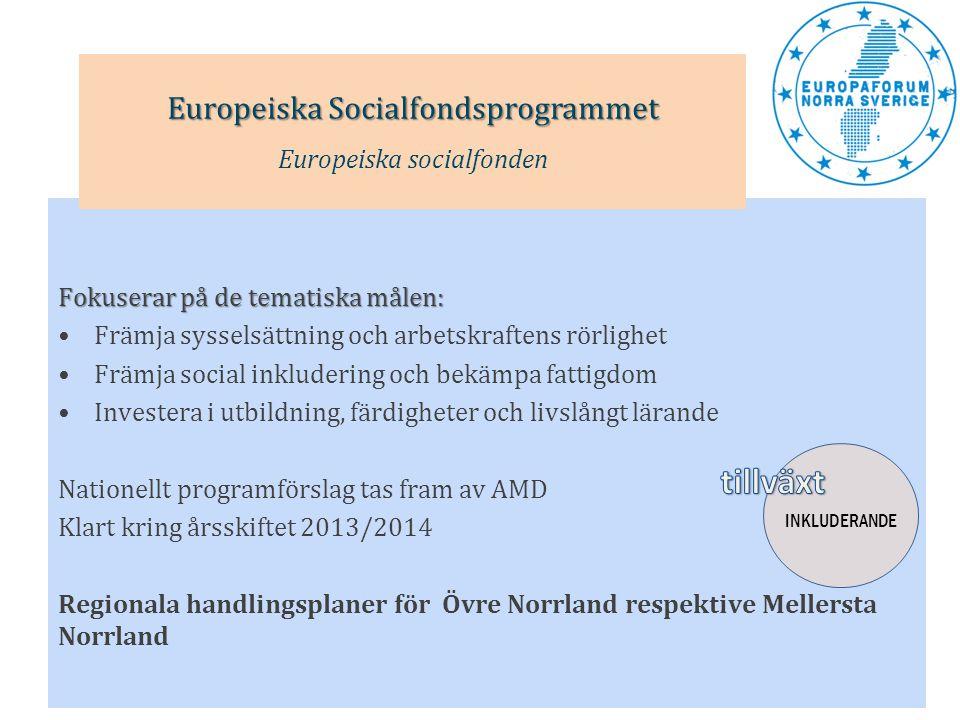 Fokuserar på de tematiska målen: •Främja sysselsättning och arbetskraftens rörlighet •Främja social inkludering och bekämpa fattigdom •Investera i utb
