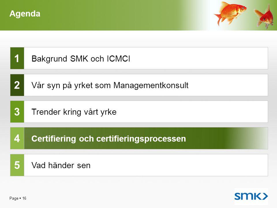 Page  16 Agenda Bakgrund SMK och ICMCI Trender kring vårt yrke Certifiering och certifieringsprocessen Vad händer sen 1 2 3 4 5 Vår syn på yrket som