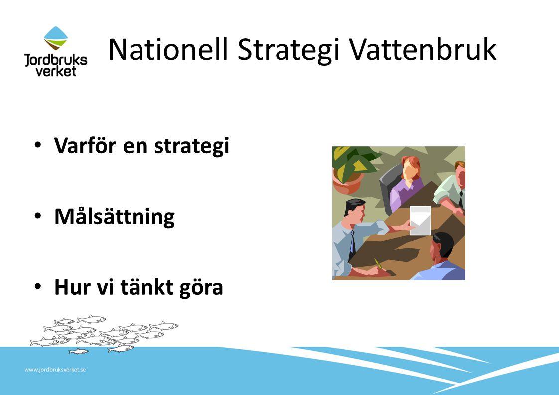 Nationell Strategi Vattenbruk • Varför en strategi • Målsättning • Hur vi tänkt göra