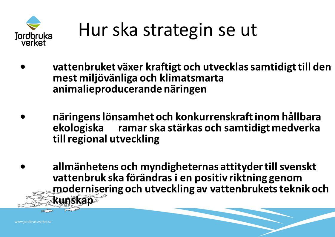 Hur ska strategin se ut •vattenbruket växer kraftigt och utvecklas samtidigt till den mest miljövänliga och klimatsmarta animalieproducerande näringen