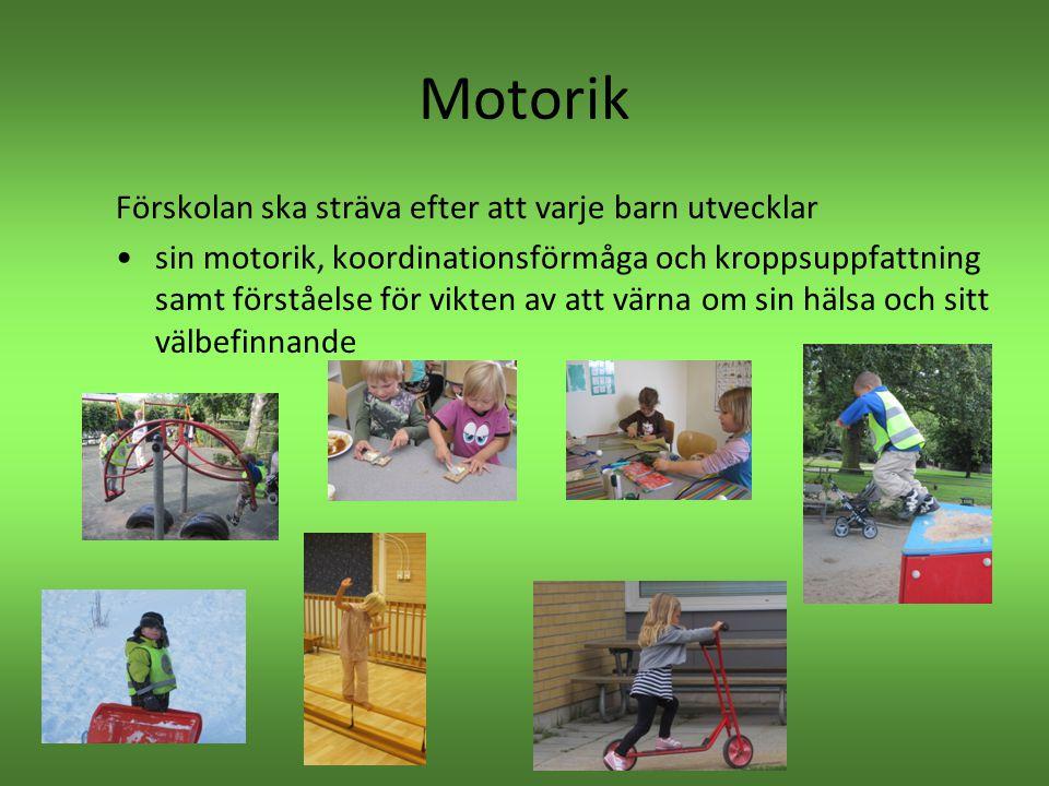 Motorik Förskolan ska sträva efter att varje barn utvecklar •sin motorik, koordinationsförmåga och kroppsuppfattning samt förståelse för vikten av att