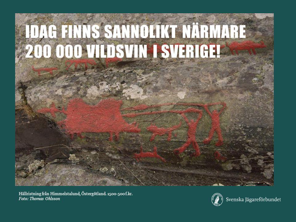 Hällristning från Himmelstalund, Östergötland. 1500-500 f.kr.