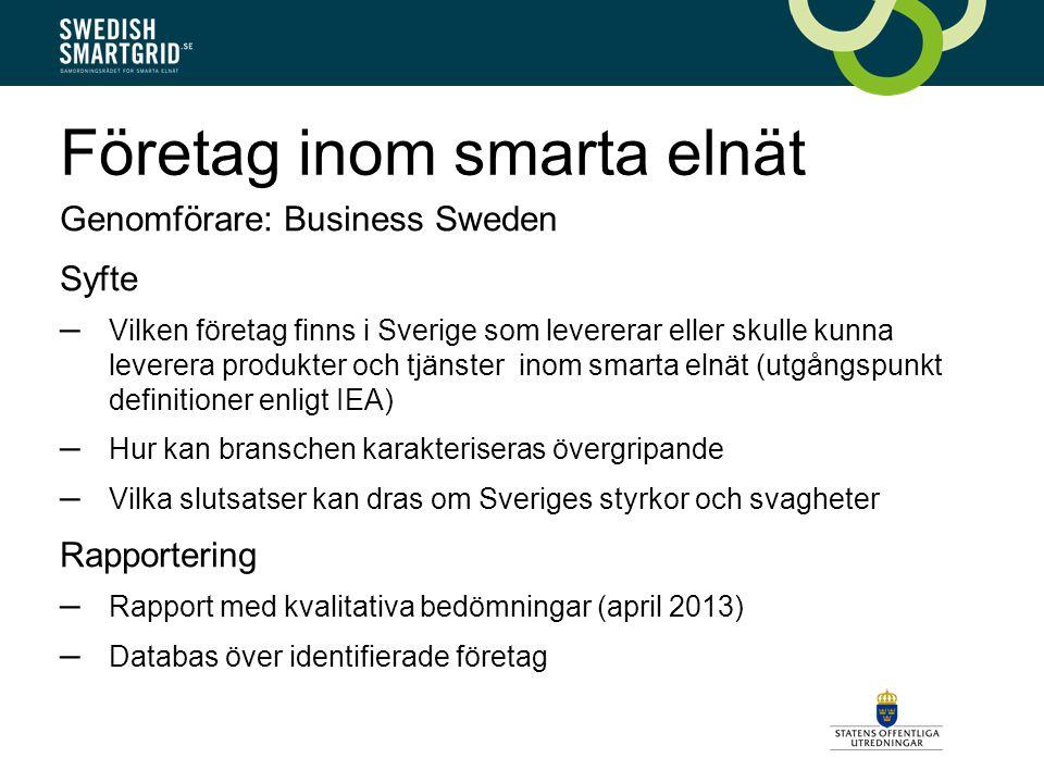 Företag inom smarta elnät Genomförare: Business Sweden Syfte – Vilken företag finns i Sverige som levererar eller skulle kunna leverera produkter och tjänster inom smarta elnät (utgångspunkt definitioner enligt IEA) – Hur kan branschen karakteriseras övergripande – Vilka slutsatser kan dras om Sveriges styrkor och svagheter Rapportering – Rapport med kvalitativa bedömningar (april 2013) – Databas över identifierade företag
