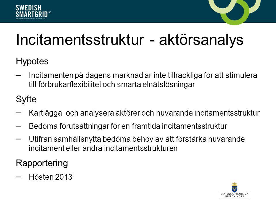 Kartläggning av forskningsprojekt Genomförare: Ramböll Syfte – Inventera och ge en så heltäckande bild som möjligt över forskningsaktiviteter i landet inom smarta elnät – Tydliggöra svenska insatser på EU-nivå och internationellt Metod – Enkät och kompletterande kvalitativa telefonintervjuer Rapportering – Slutrapportering i mitten av juni 2013