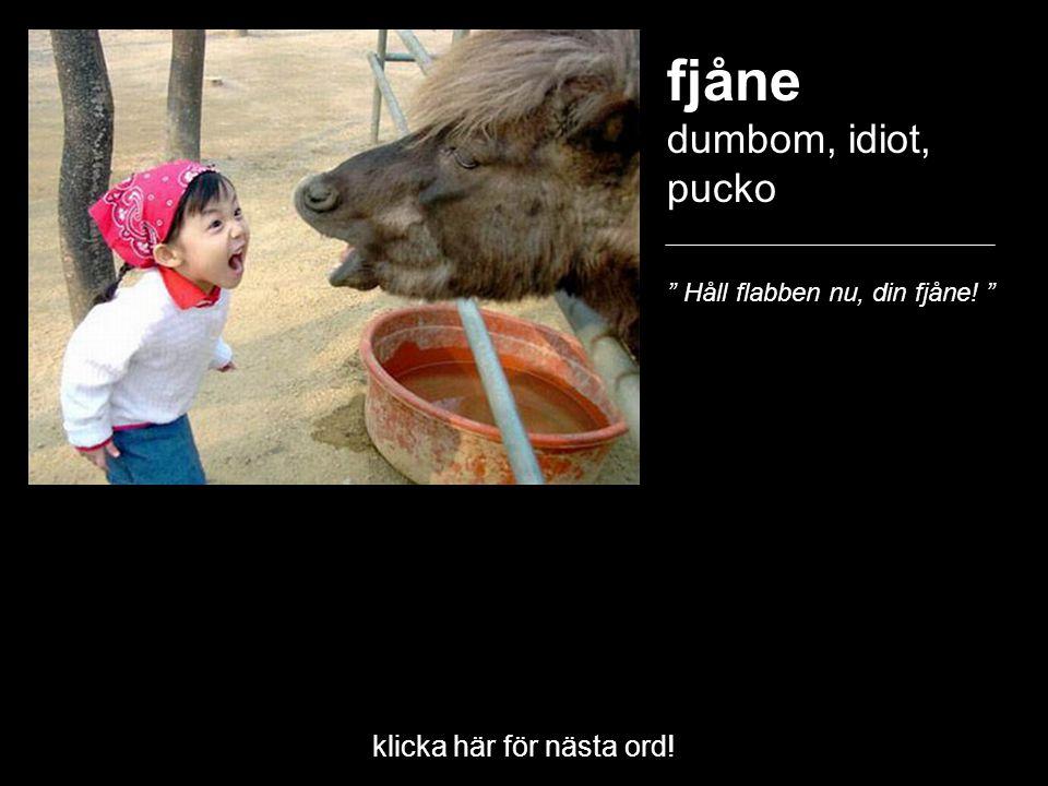 """klicka här för nästa ord! fjåne dumbom, idiot, pucko """" Håll flabben nu, din fjåne! """""""