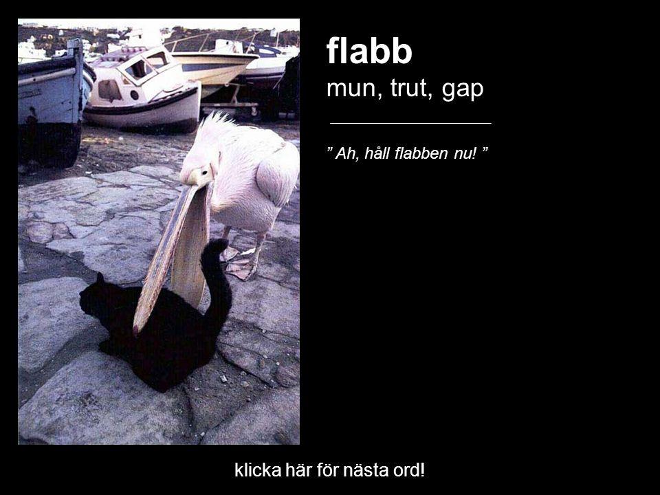 """klicka här för nästa ord! flabb mun, trut, gap """" Ah, håll flabben nu! """""""