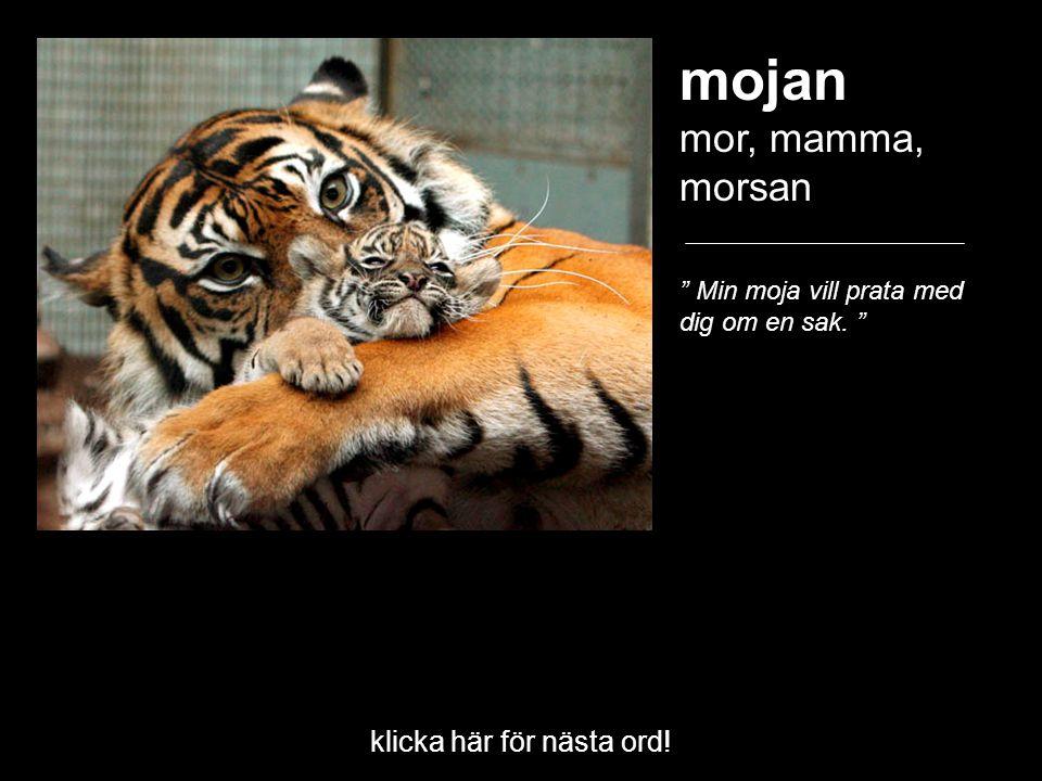 """mojan mor, mamma, morsan """" Min moja vill prata med dig om en sak. """" klicka här för nästa ord!"""