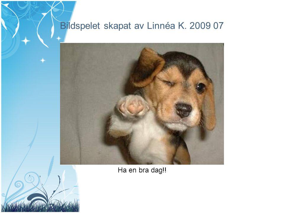 Bildspelet skapat av Linnéa K. 2009 07 Ha en bra dag!!