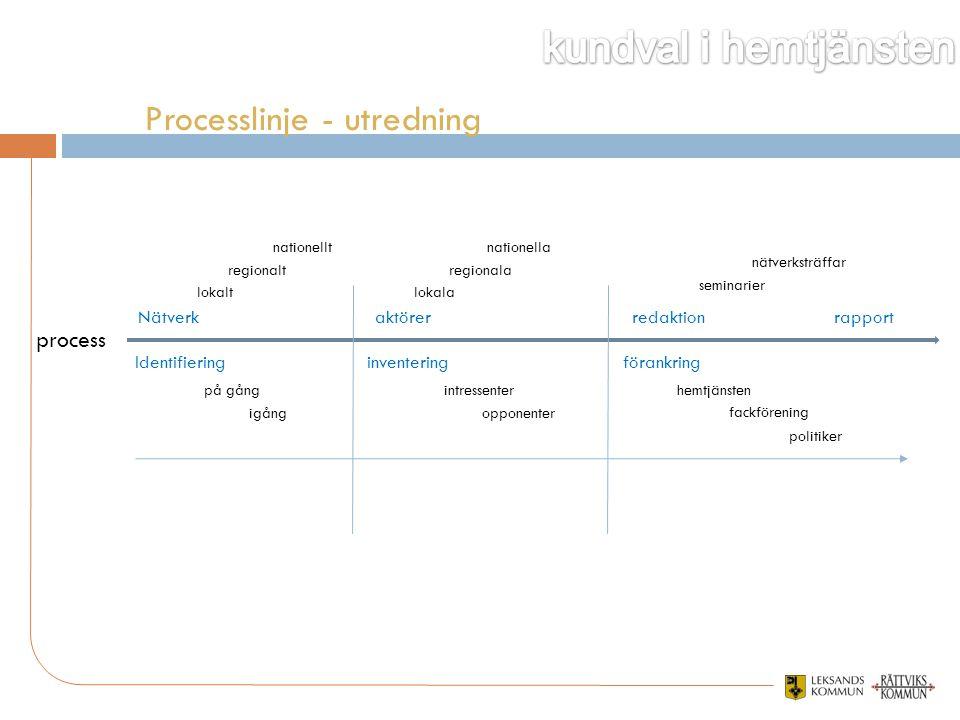 process inventering på gång aktörerNätverk Identifiering regionalt nationellt lokala regionala nationella igång lokalt hemtjänsten nätverksträffar sem