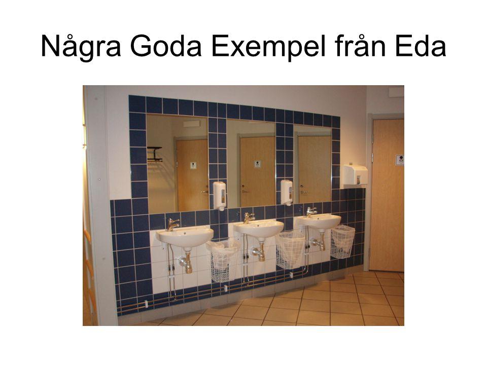 Några Goda Exempel från Eda