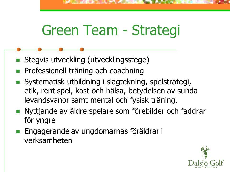 Green Team - Strategi  Stegvis utveckling (utvecklingsstege)  Professionell träning och coachning  Systematisk utbildning i slagtekning, spelstrate
