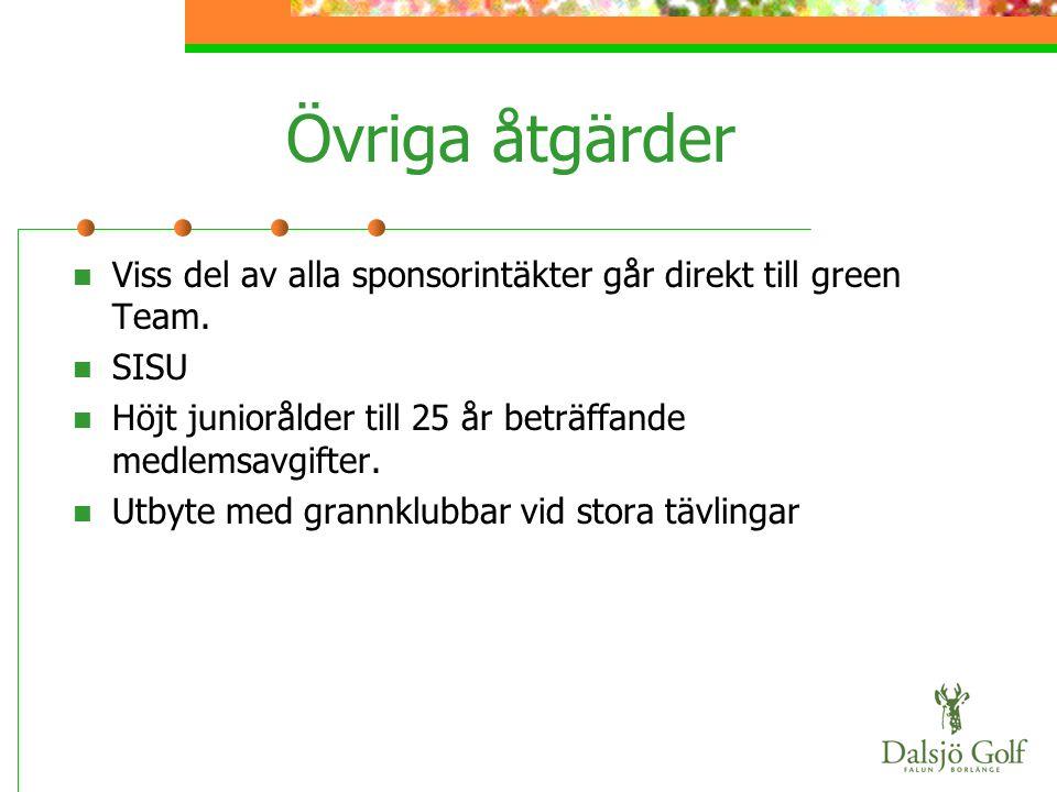 Övriga åtgärder  Viss del av alla sponsorintäkter går direkt till green Team.  SISU  Höjt juniorålder till 25 år beträffande medlemsavgifter.  Utb