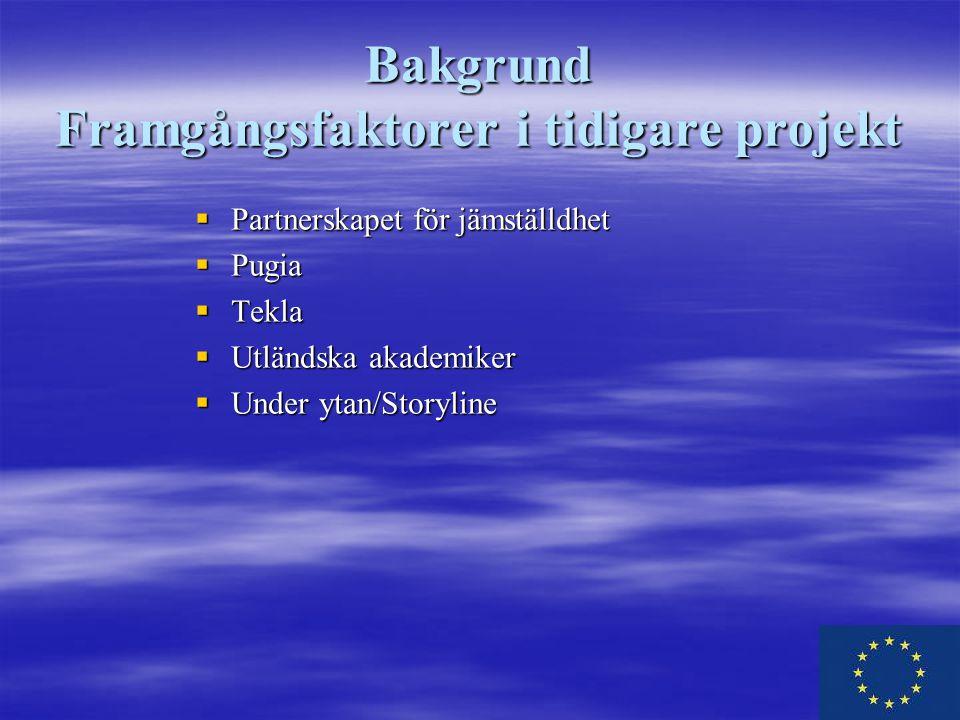 Bakgrund Framgångsfaktorer i tidigare projekt  Partnerskapet för jämställdhet  Pugia  Tekla  Utländska akademiker  Under ytan/Storyline