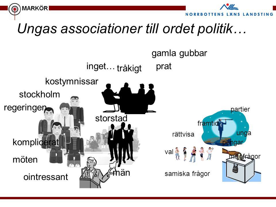 Ungas associationer till ordet politik… kostymnissar män möten gamla gubbar storstad pratinget… regeringen komplicerat ointressant stockholm tråkigt m