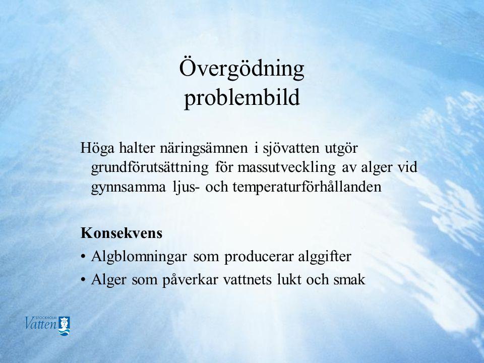 Övergödning problembild Höga halter näringsämnen i sjövatten utgör grundförutsättning för massutveckling av alger vid gynnsamma ljus- och temperaturförhållanden Konsekvens •Algblomningar som producerar alggifter •Alger som påverkar vattnets lukt och smak