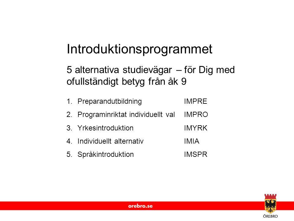 www.orebro.se Introduktionsprogrammet 5 alternativa studievägar – för Dig med ofullständigt betyg från åk 9 1.PreparandutbildningIMPRE 2.Programinrikt
