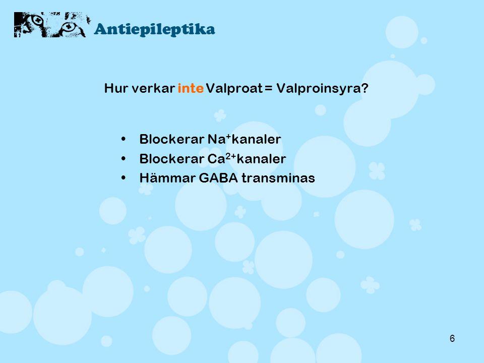 6 Hur verkar inte Valproat = Valproinsyra? •Blockerar Na + kanaler •Blockerar Ca 2+ kanaler •Hämmar GABA transminas