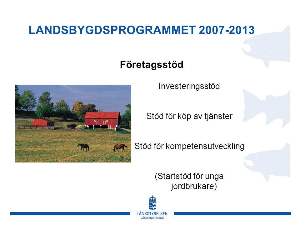 LANDSBYGDSPROGRAMMET 2007-2013 Företagsstöd Investeringsstöd Stöd för köp av tjänster Stöd för kompetensutveckling (Startstöd för unga jordbrukare)