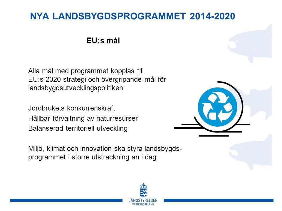 NYA LANDSBYGDSPROGRAMMET 2014-2020 Alla mål med programmet kopplas till EU:s 2020 strategi och övergripande mål för landsbygdsutvecklingspolitiken: Jordbrukets konkurrenskraft Hållbar förvaltning av naturresurser Balanserad territoriell utveckling Miljö, klimat och innovation ska styra landsbygds- programmet i större utsträckning än i dag.
