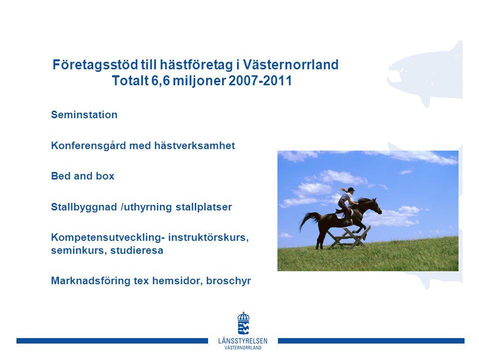 Företagsstöd till hästföretag i Västernorrland Totalt 6,6 miljoner 2007-2011 Seminstation Konferensgård med hästverksamhet Bed and box Stallbyggnad /uthyrning stallplatser Kompetensutveckling- instruktörskurs, seminkurs, studieresa Marknadsföring tex hemsidor, broschyr