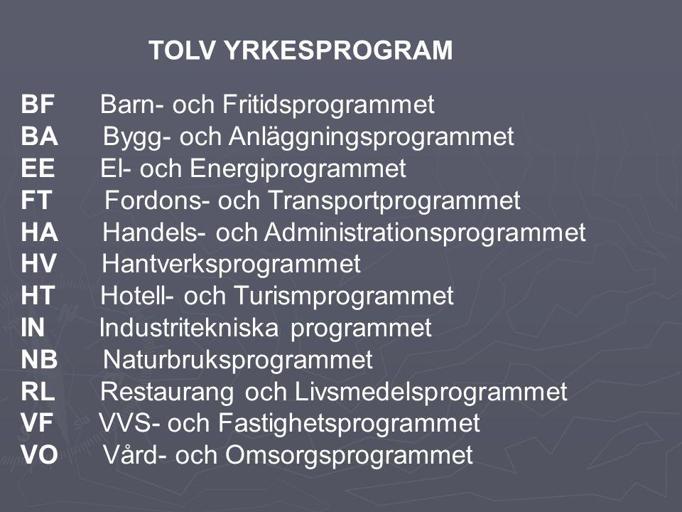 BF Barn- och Fritidsprogrammet BA Bygg- och Anläggningsprogrammet EE El- och Energiprogrammet FT Fordons- och Transportprogrammet HA Handels- och Administrationsprogrammet HV Hantverksprogrammet HT Hotell- och Turismprogrammet IN Industritekniska programmet NB Naturbruksprogrammet RL Restaurang och Livsmedelsprogrammet VF VVS- och Fastighetsprogrammet VO Vård- och Omsorgsprogrammet TOLV YRKESPROGRAM