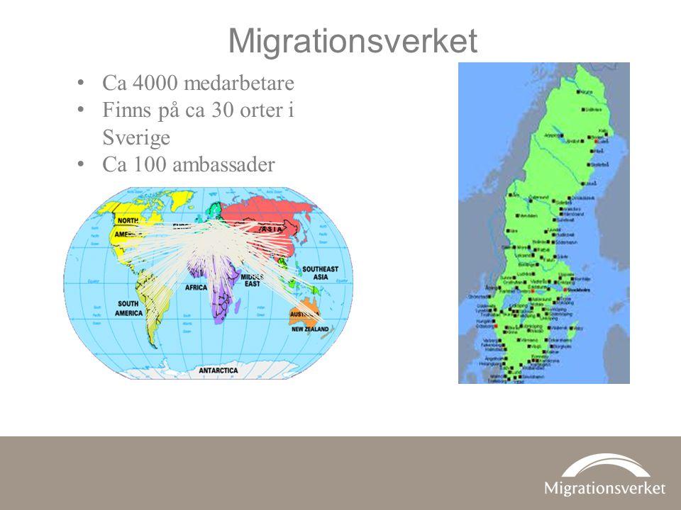 •verka för en långsiktigt hållbar migrationspolitik som värnar asylrätten •underlätta rörlighet över gränser inom ramen för den reglerade invandringen •främja en behovsstyrd arbetskrafts- invandring •tillvarata och beakta migrationens utvecklingseffekter •fördjupa det europeiska och internationella samarbetet.