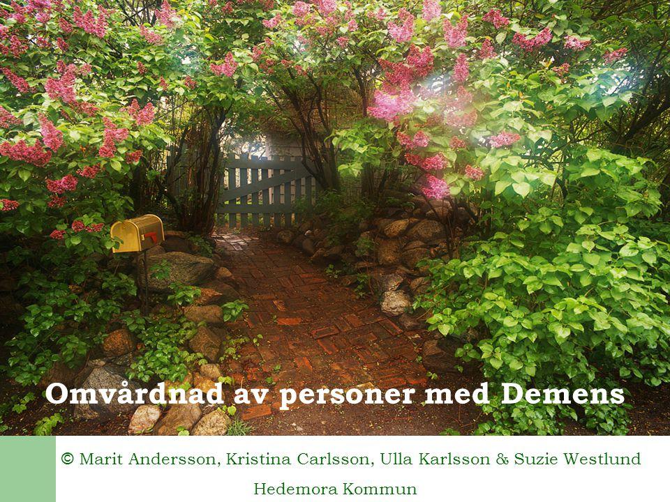 Omvårdnad av personer med Demens © Marit Andersson, Kristina Carlsson, Ulla Karlsson & Suzie Westlund Hedemora Kommun