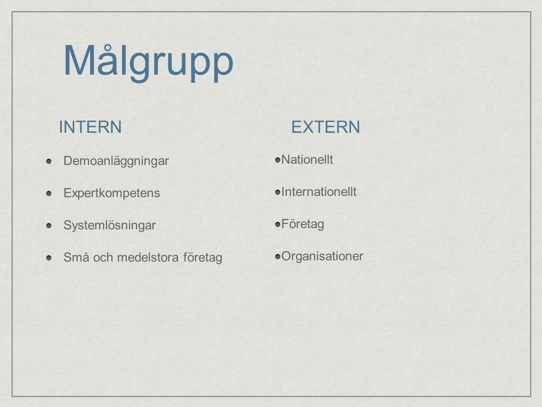Målgrupp Demoanläggningar Expertkompetens Systemlösningar Små och medelstora företag INTERNEXTERN Nationellt Internationellt Företag Organisationer