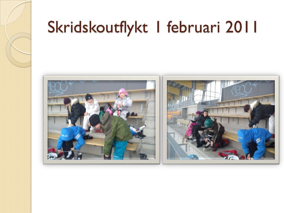 Skridskoutflykt 1 februari 2011