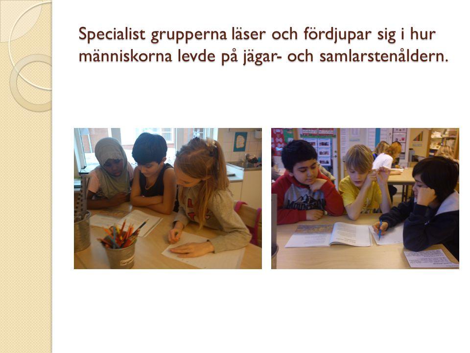 Eleverna läser och pratar om bilderna för att finna relevant fakta till sitt special område.