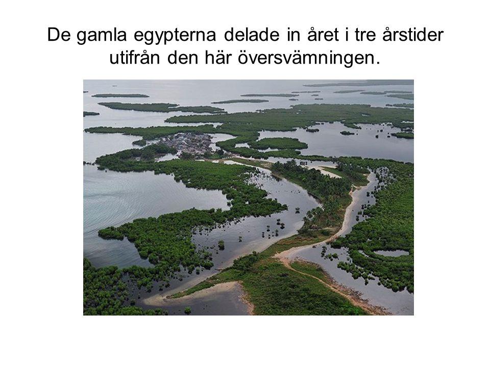 De gamla egypterna delade in året i tre årstider utifrån den här översvämningen.