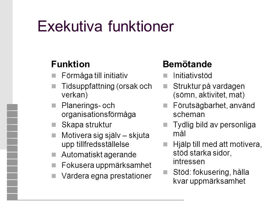 Exekutiva funktioner Funktion  Förmåga till initiativ  Tidsuppfattning (orsak och verkan)  Planerings- och organisationsförmåga  Skapa struktur 
