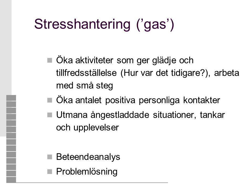 Stresshantering ('gas')  Öka aktiviteter som ger glädje och tillfredsställelse (Hur var det tidigare?), arbeta med små steg  Öka antalet positiva pe