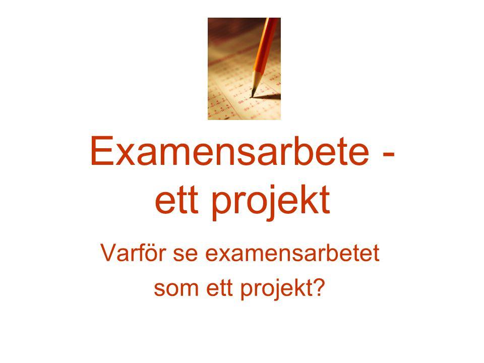 Examensarbete - ett projekt Varför se examensarbetet som ett projekt?